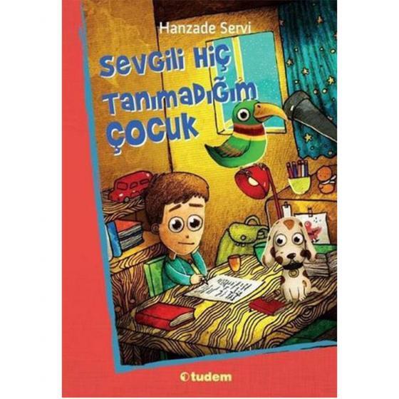 Sevgili Hiç Tanımadığım Çocuk Tudem Yayınları