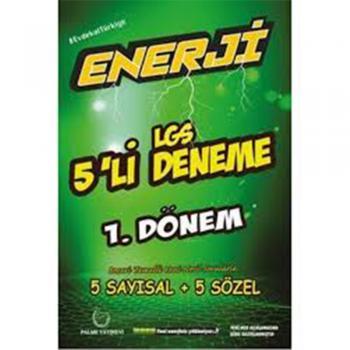 Palme 8.Sınıf LGS Enerji 1.DÖNEM 5'li Deneme